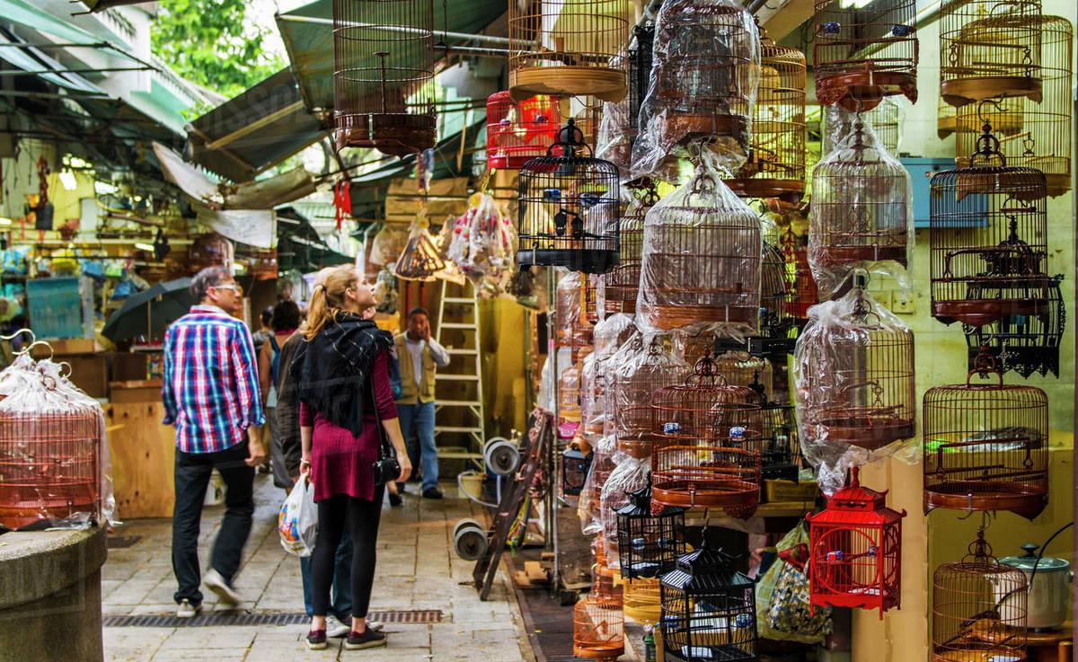 chợ chim Yuen Po du lịch Hồng Kông