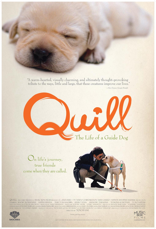 Phim hay Chú chó Quill