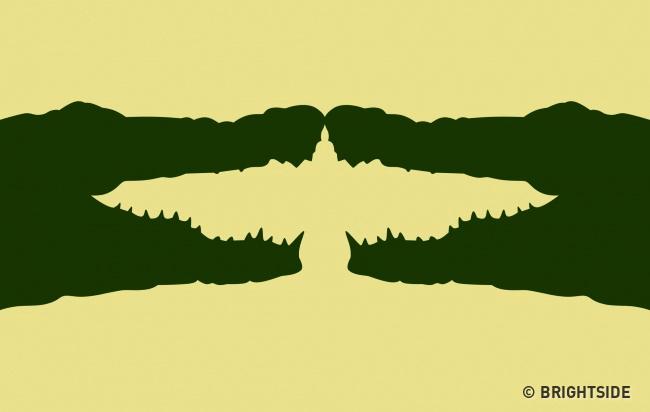 trắc nghiệm cá sấu cánh chim