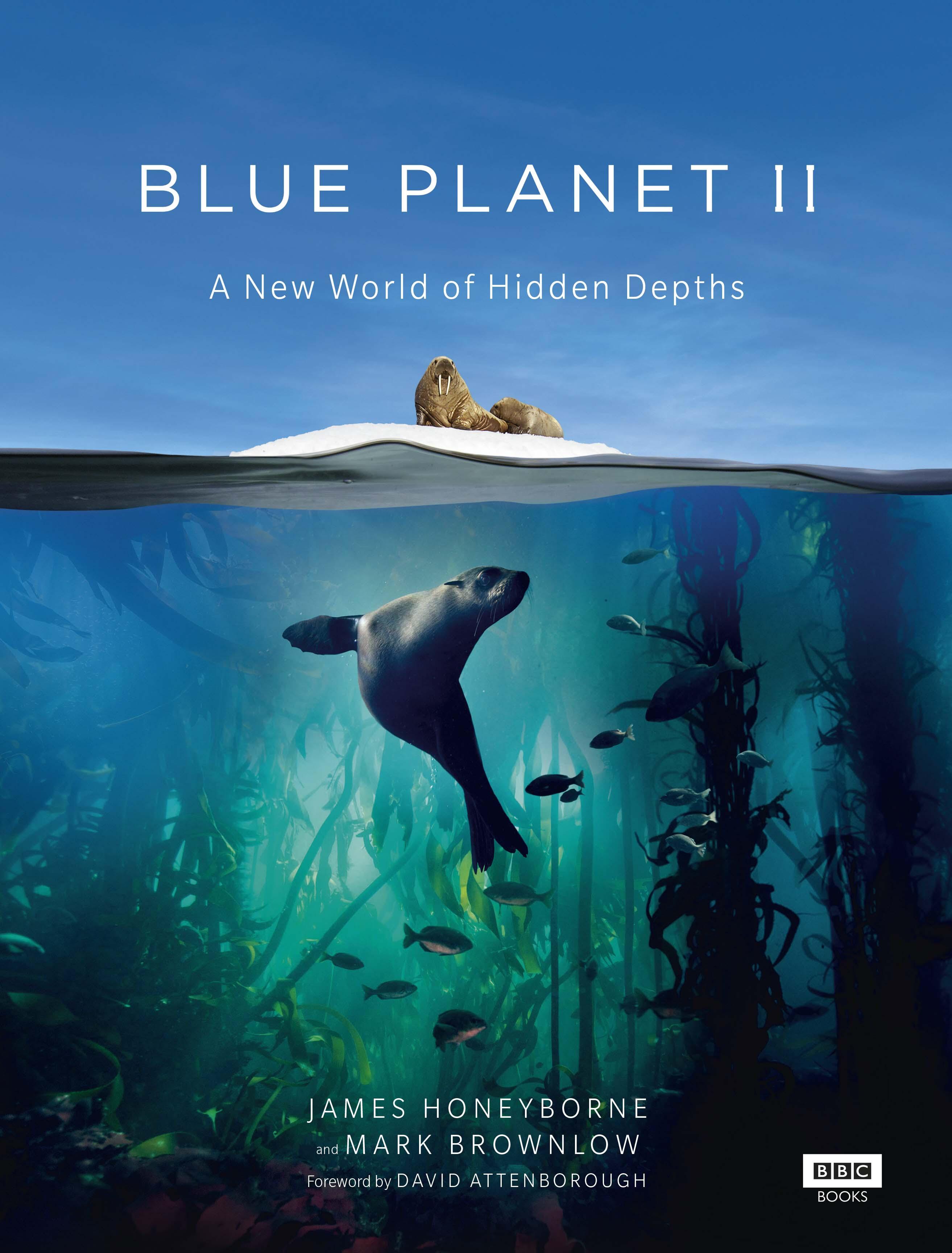 phim tài liệu Blue Planet II