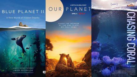 Khám phá vẻ đẹp Trái Đất qua 12 phim tài liệu về thiên nhiên