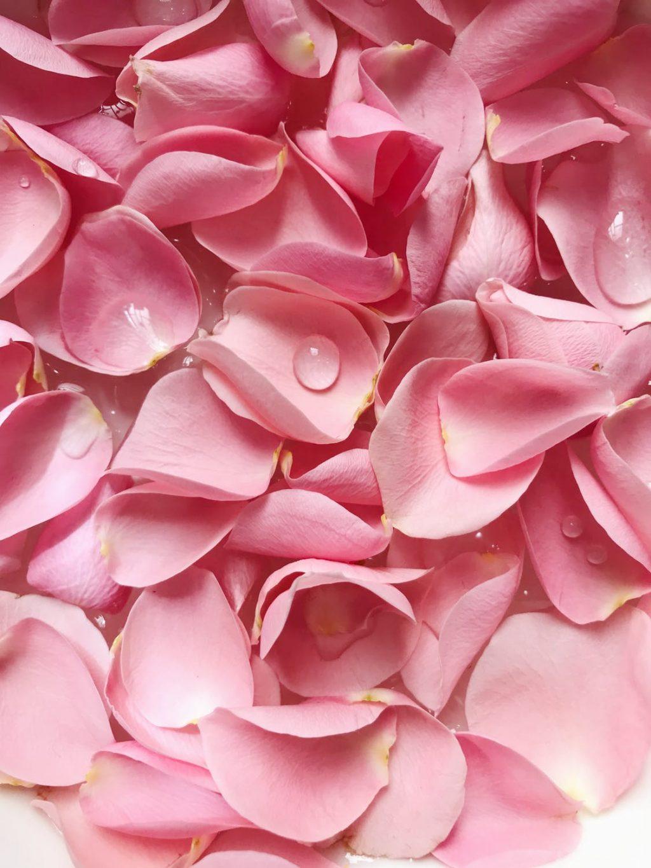 cách sử dụng nước hoa hồng là gì?