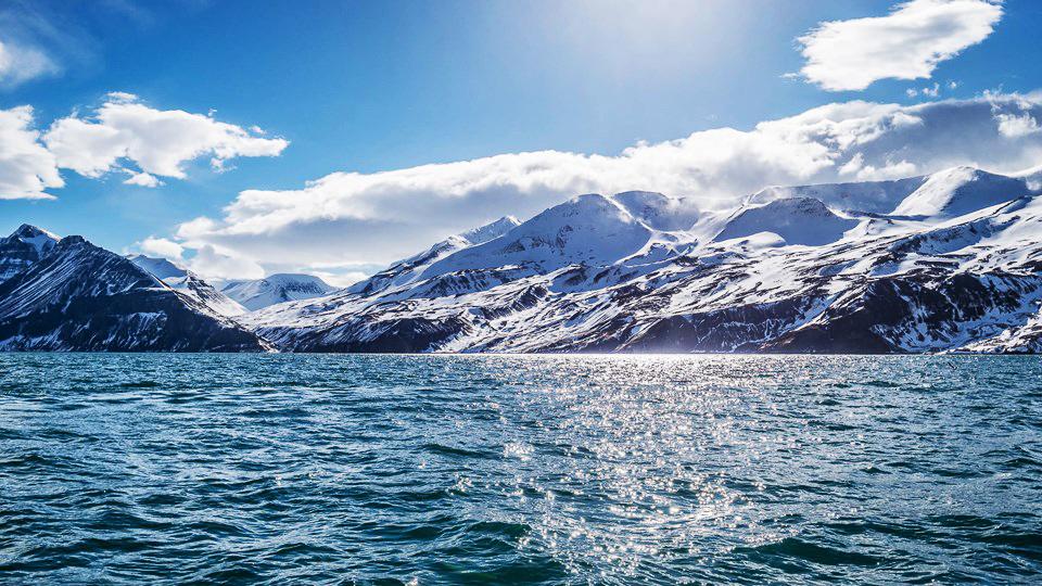 ngắm cá voi Husasta, Iceland