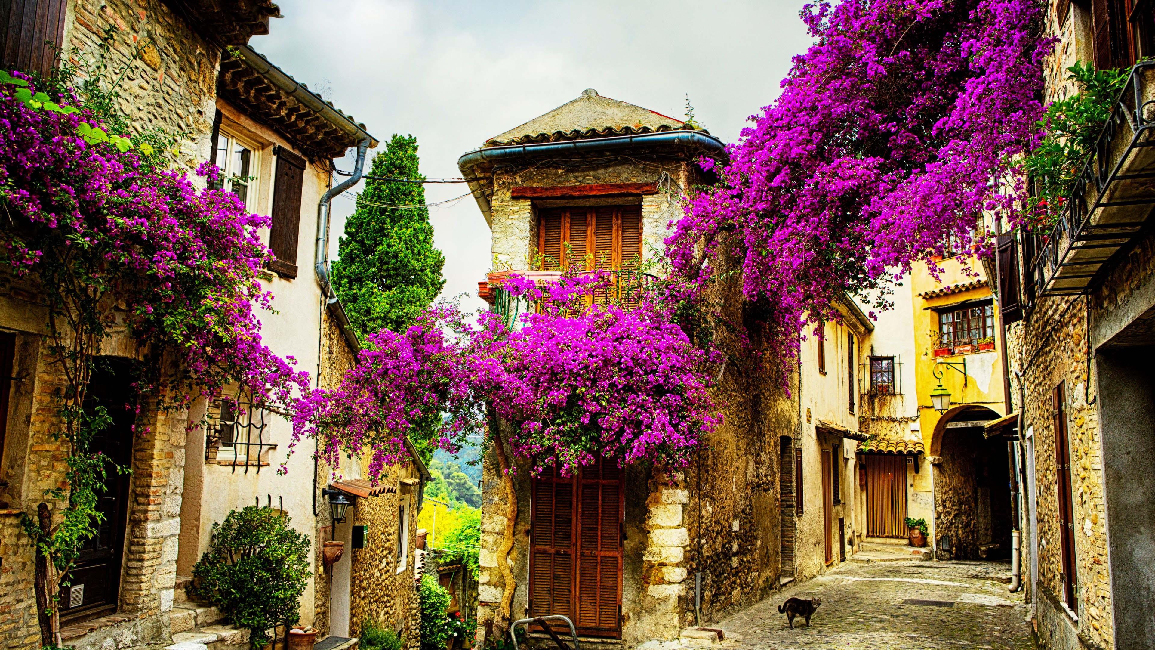 du lịch nghỉ dưỡng Provence Pháp