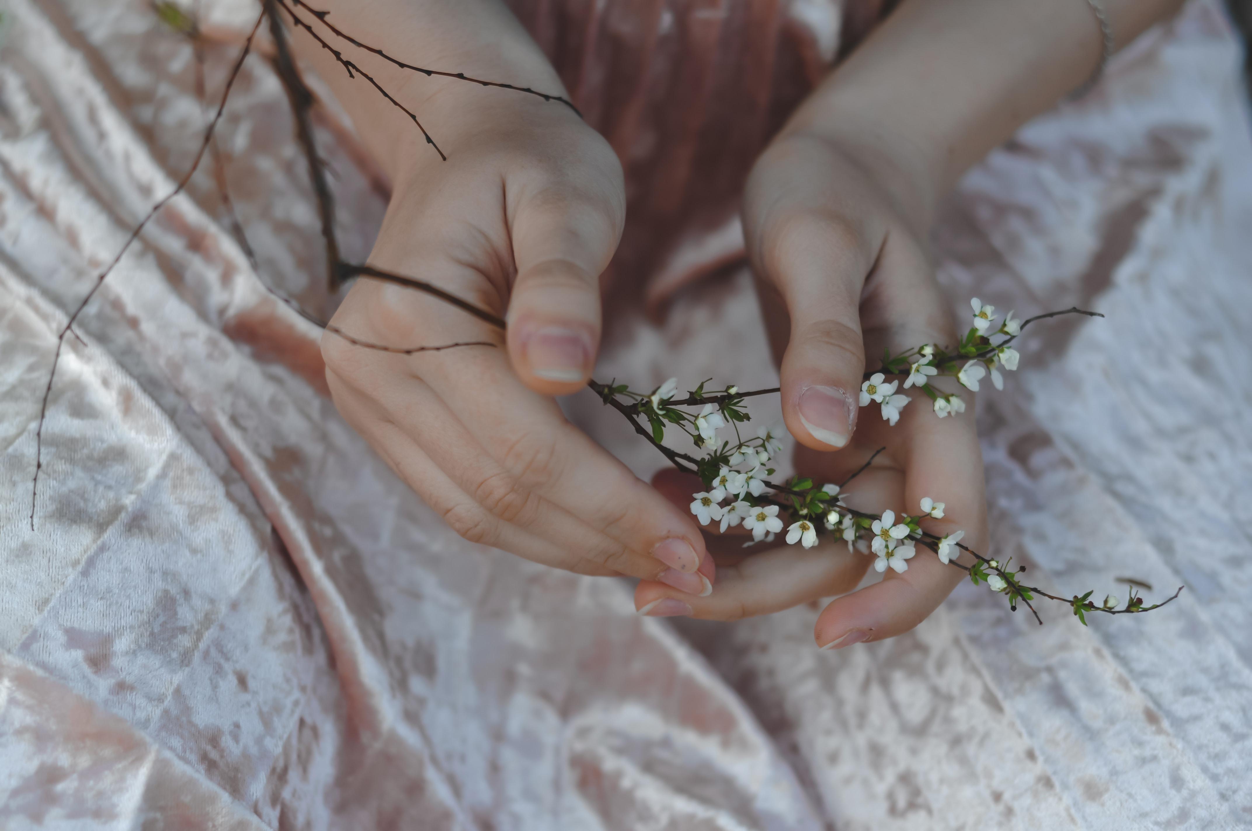 bàn tay cầm nhành hoa