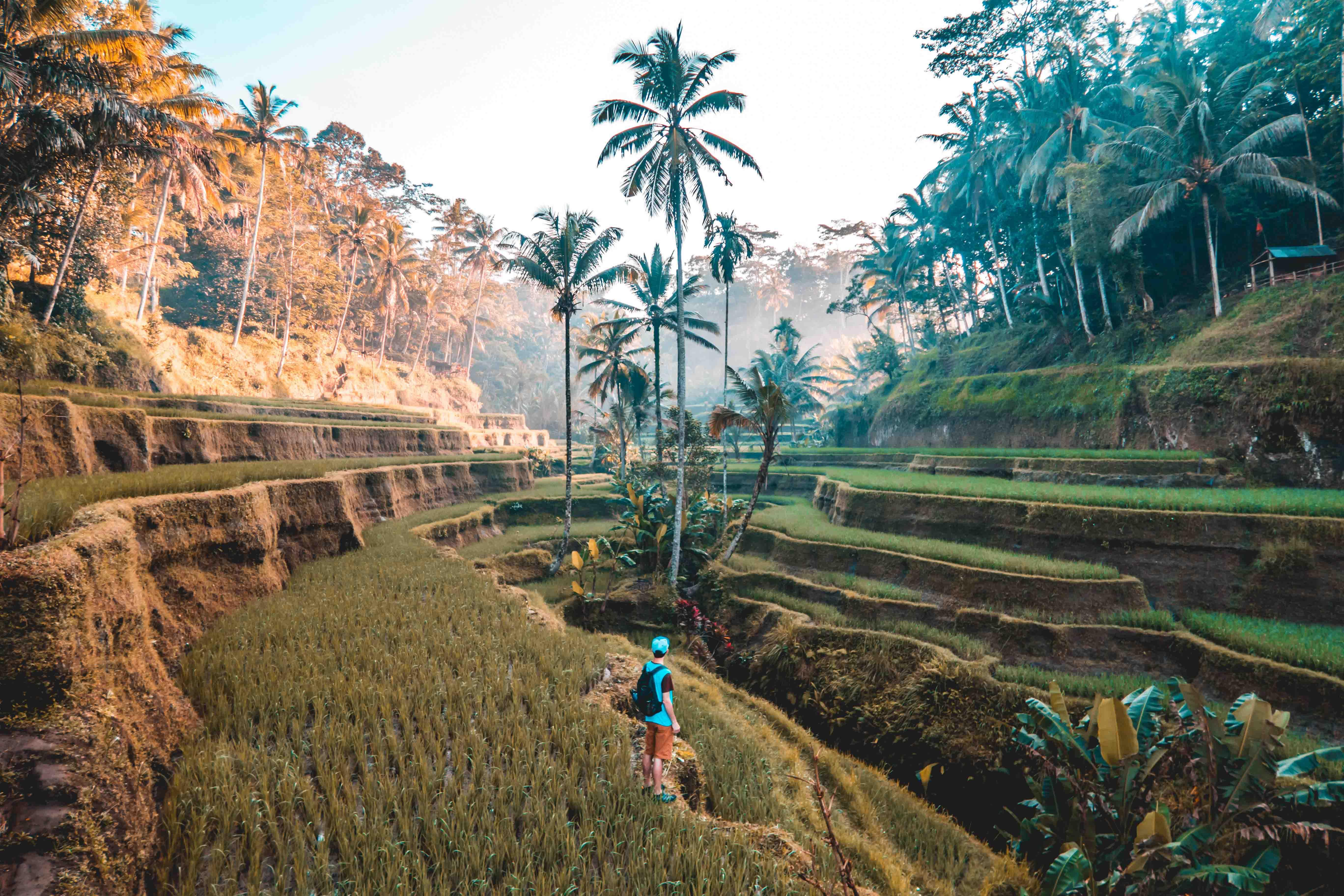 câu nói hay du lịch châu á
