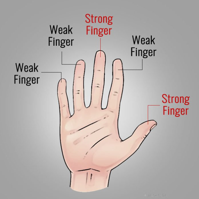 đoán tính cách qua dáng bàn tay