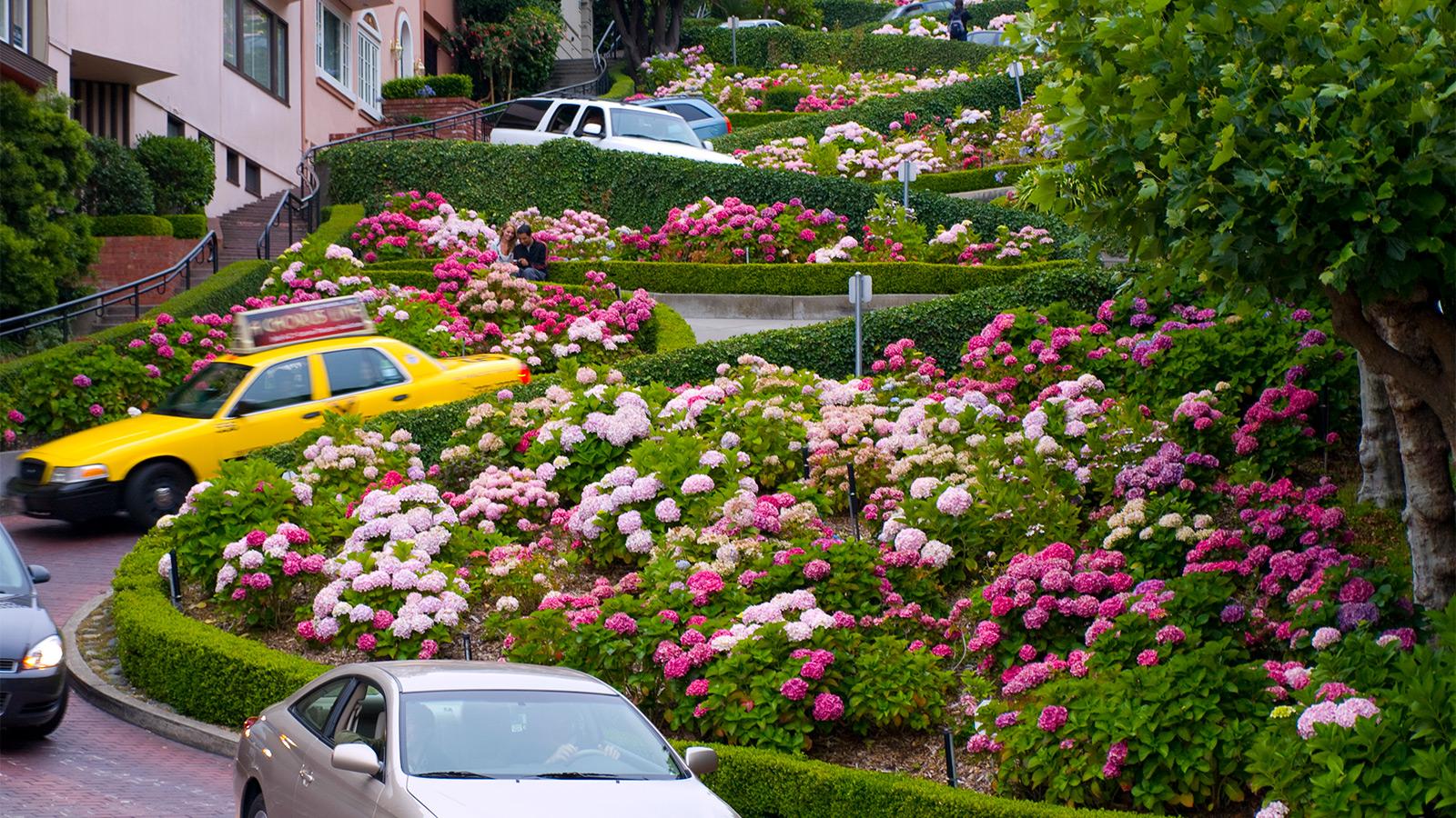 khu vườn xinh đẹp ở đường Lombard