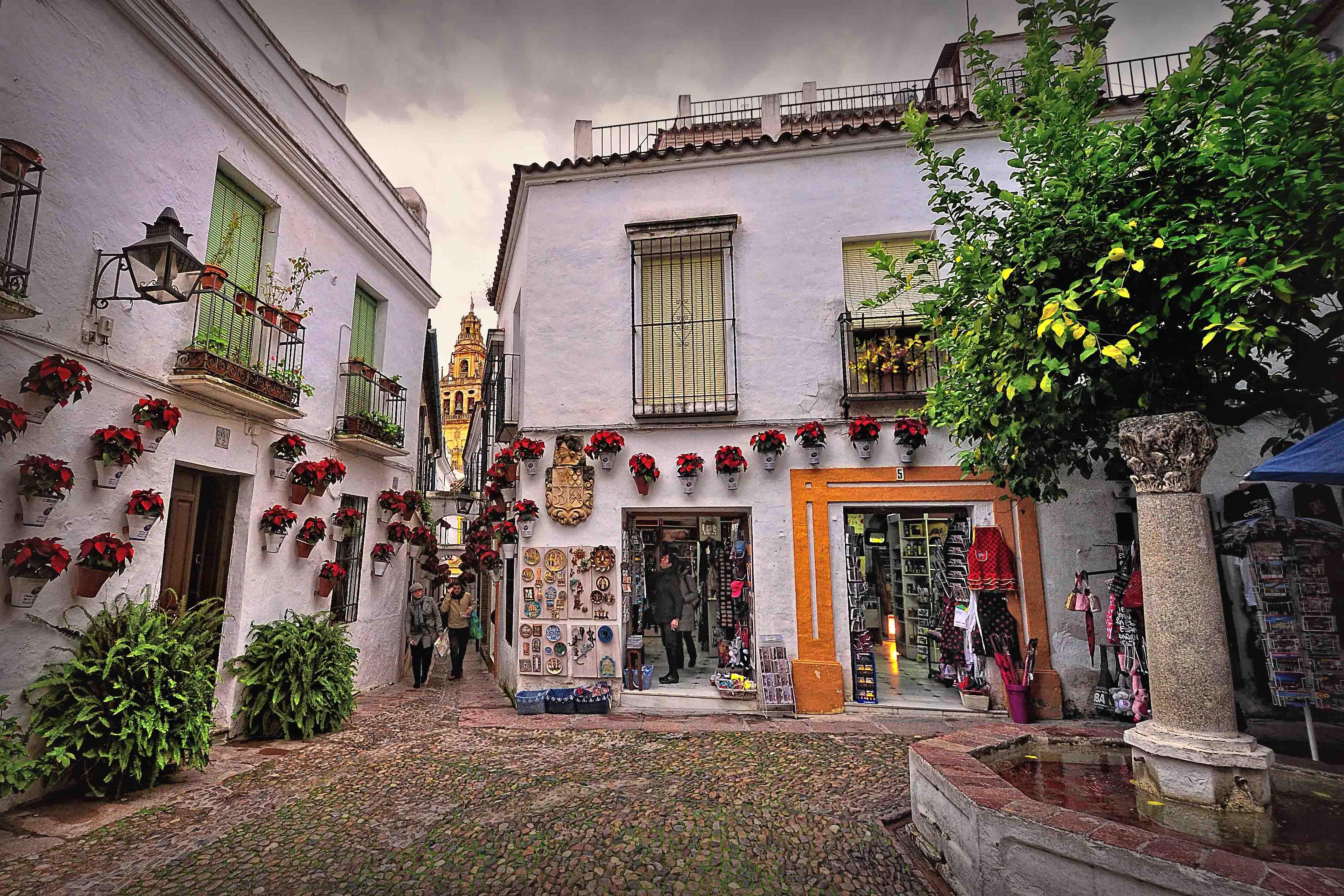 Đường Calleja de las Flores