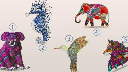 Trắc nghiệm: Khám phá sức mạnh trí tuệ qua biểu tượng con vật