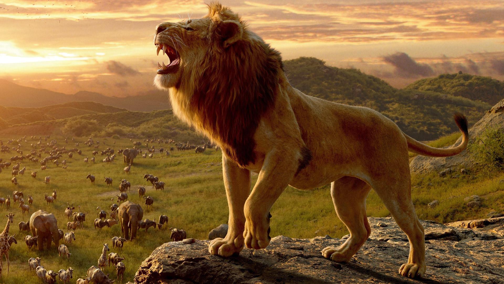 phim vua sư tư