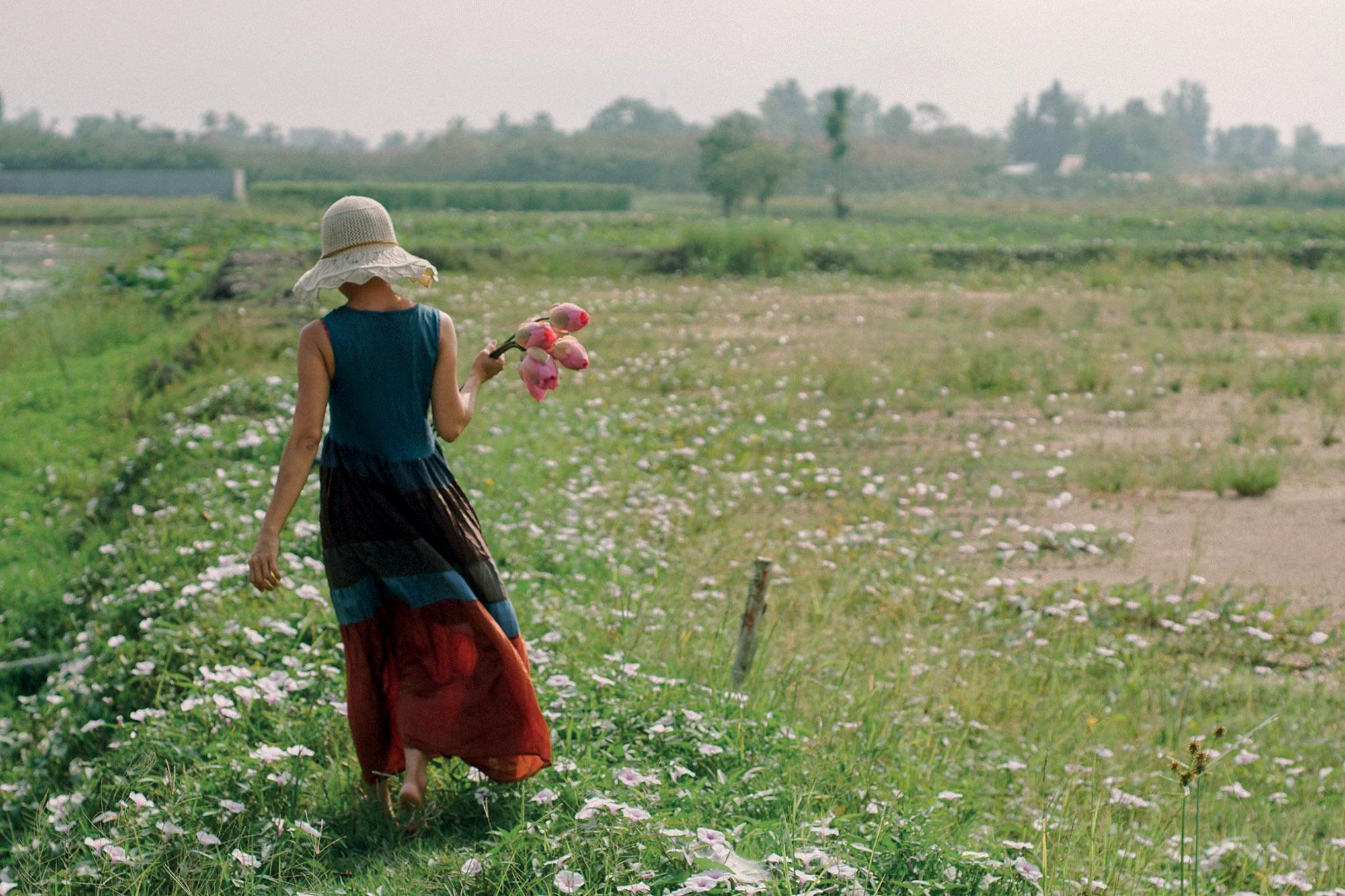 cô gái đi trên cánh đồng