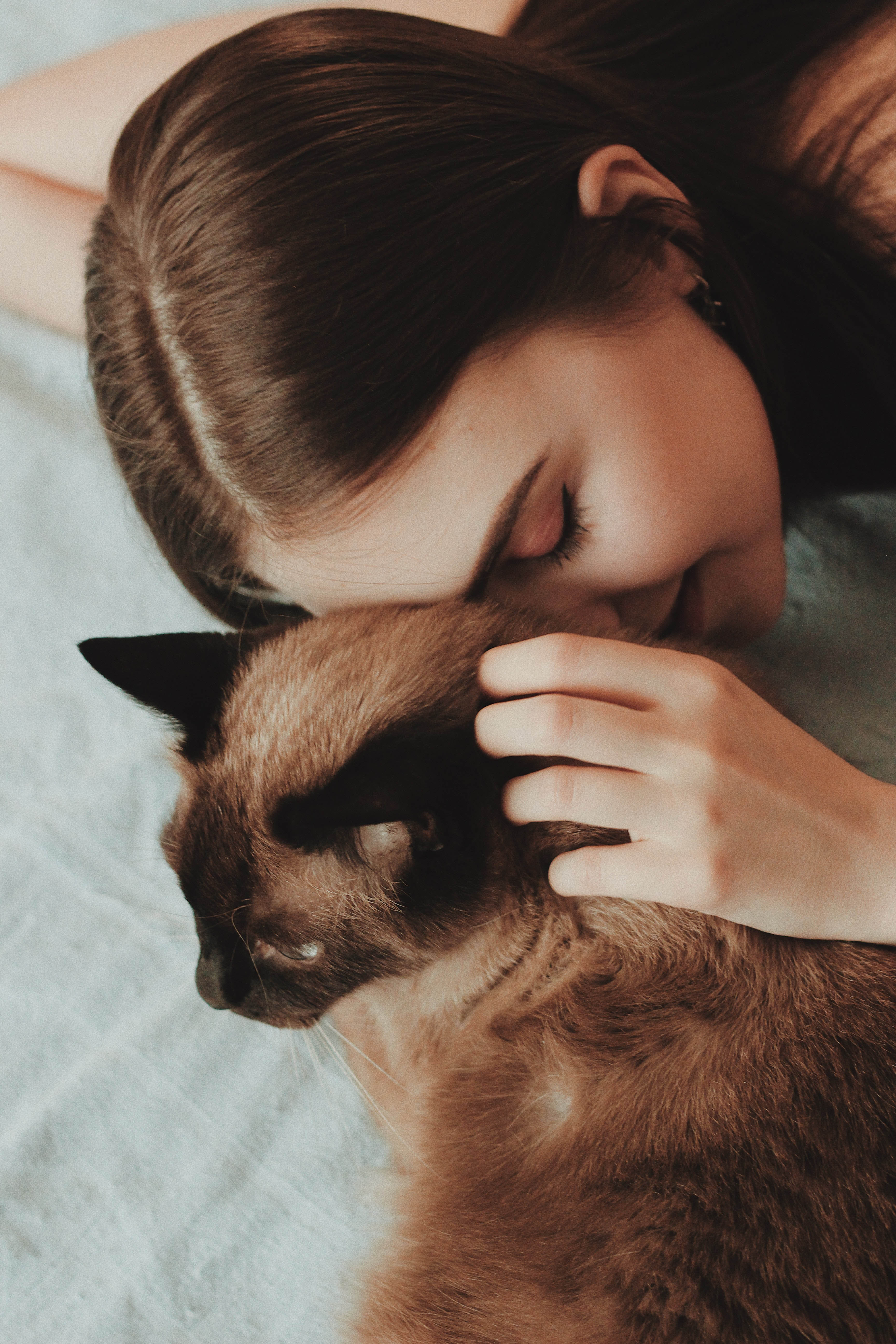 cô gái và chú mèo