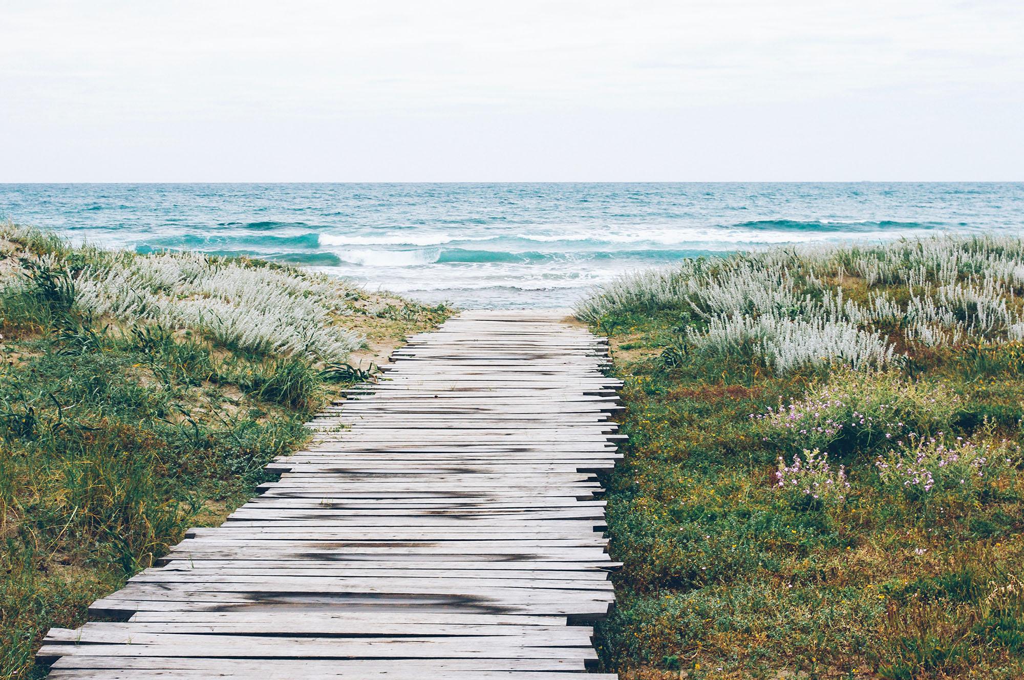 đại dương hệ sinh thái biển