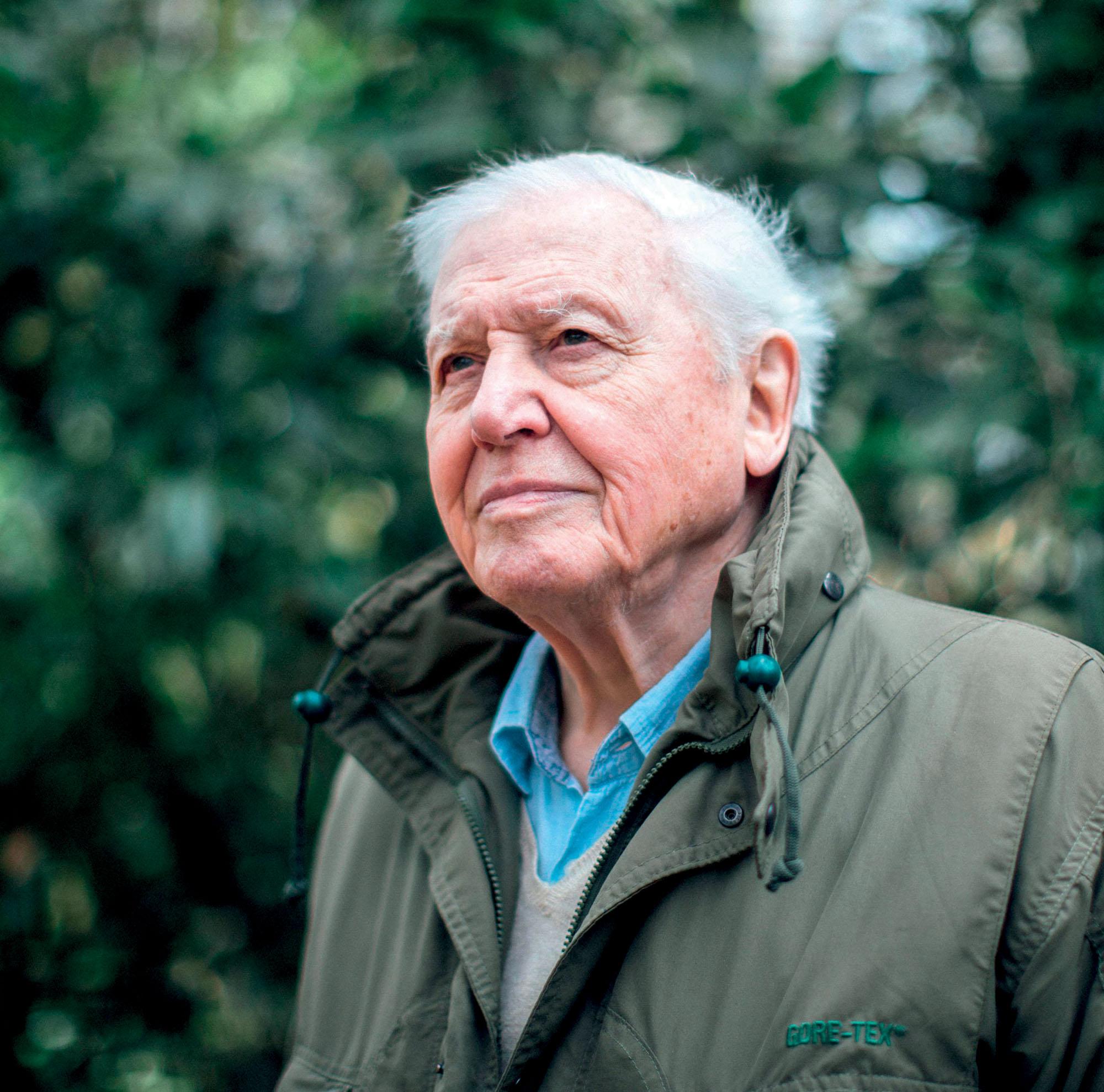 phim tài liệu nhà thuyết minh David Attenborough