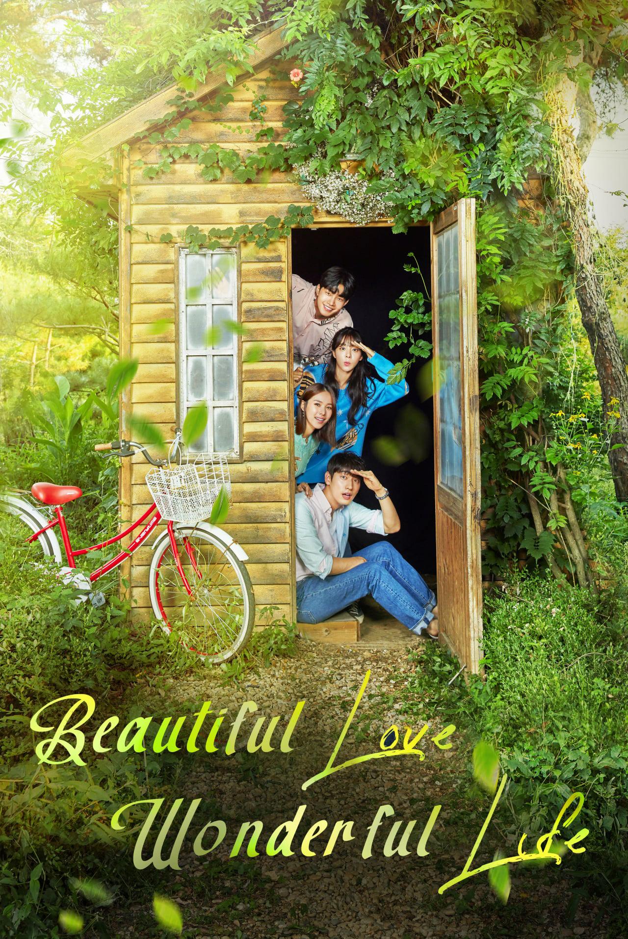 truyền hình Hàn Quốc Tình Như Mơ, Đời Như Mộng - Love Is Beautiful, Life Is Wonderful (2019)