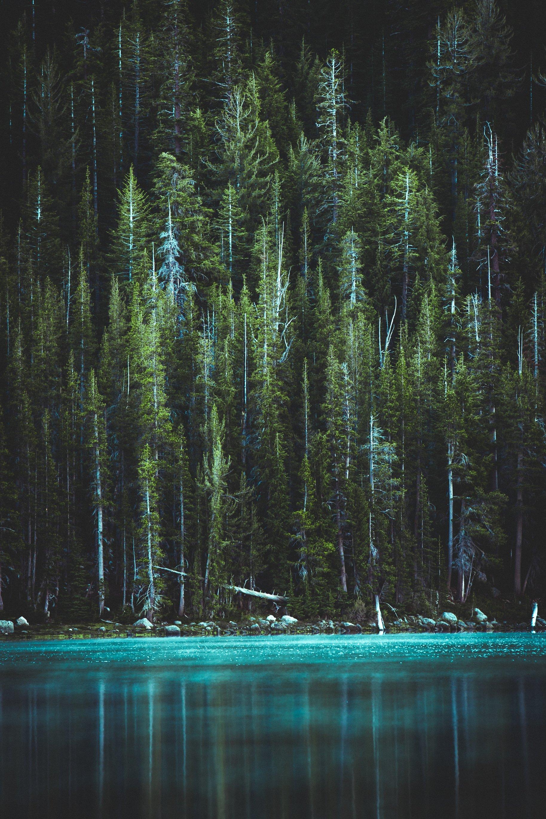 sự bình tĩnh giống như hồ