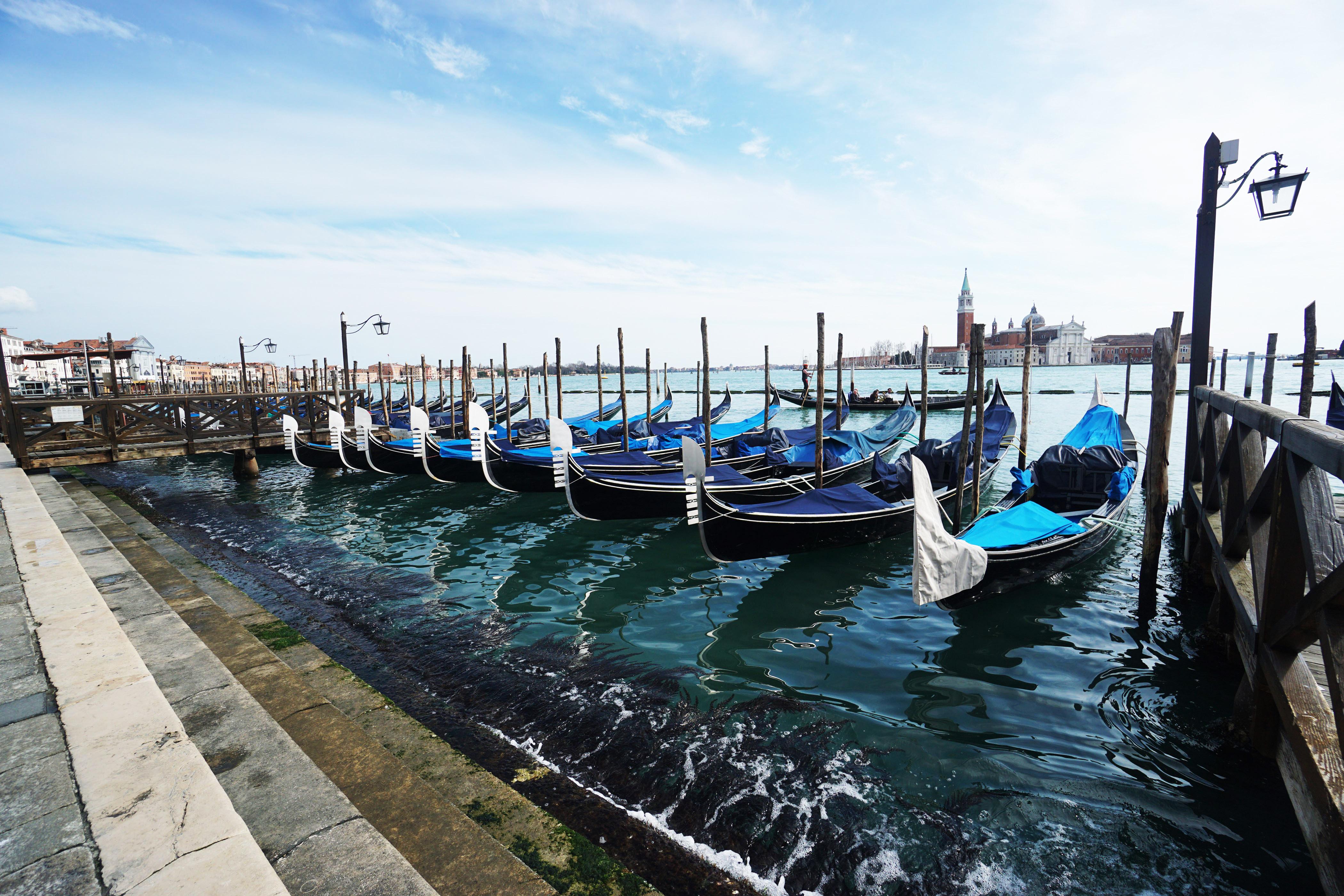 kênh đào ở Venice trong xanh trở lại nhờ đại dịch
