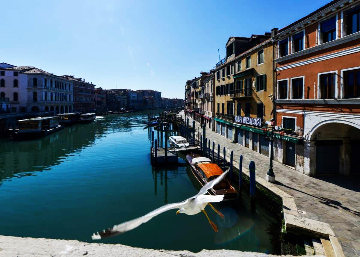 kênh đào Venice trong xanh nhờ đại dịch