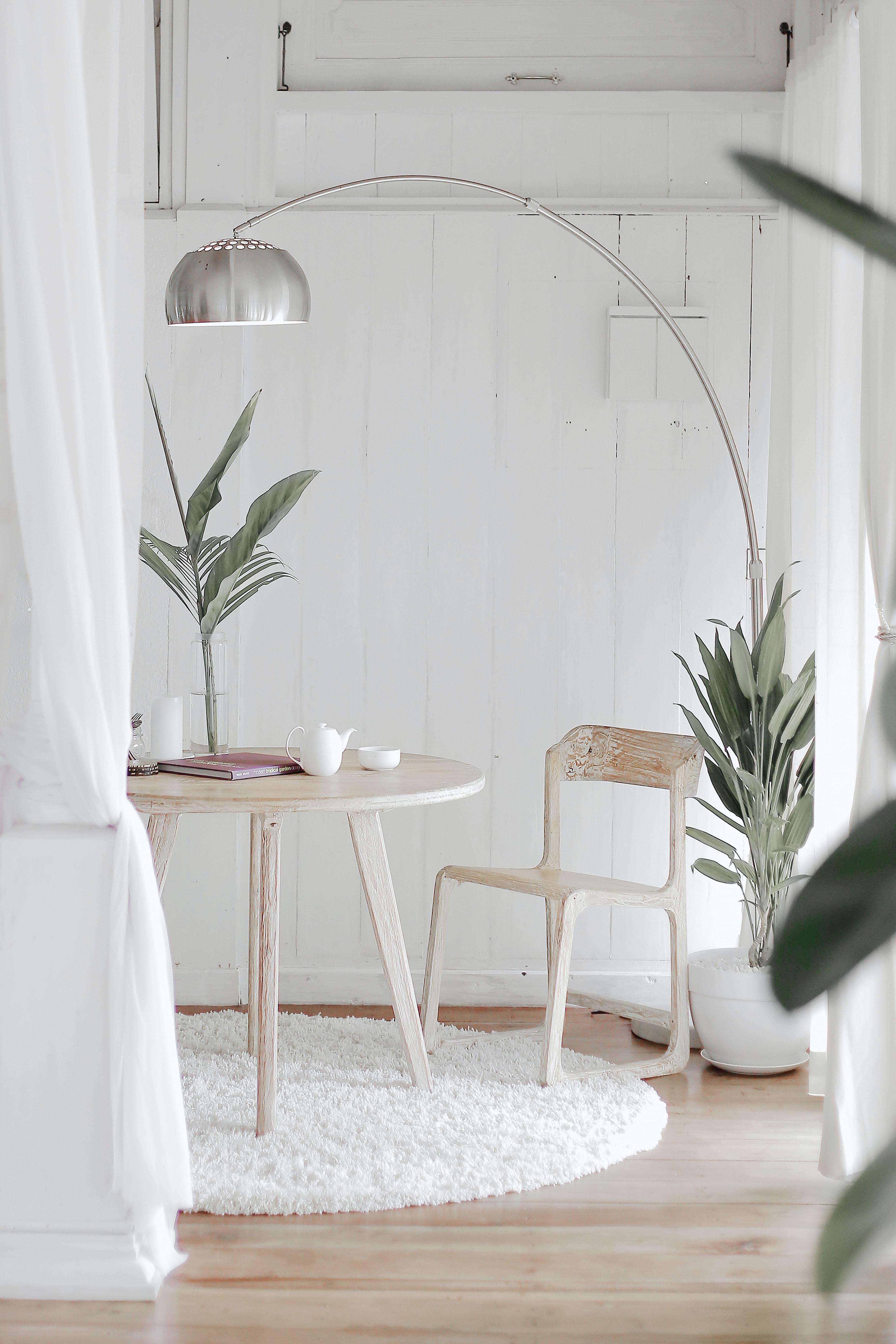 khử mùi trong nhà trồng cây phòng khách