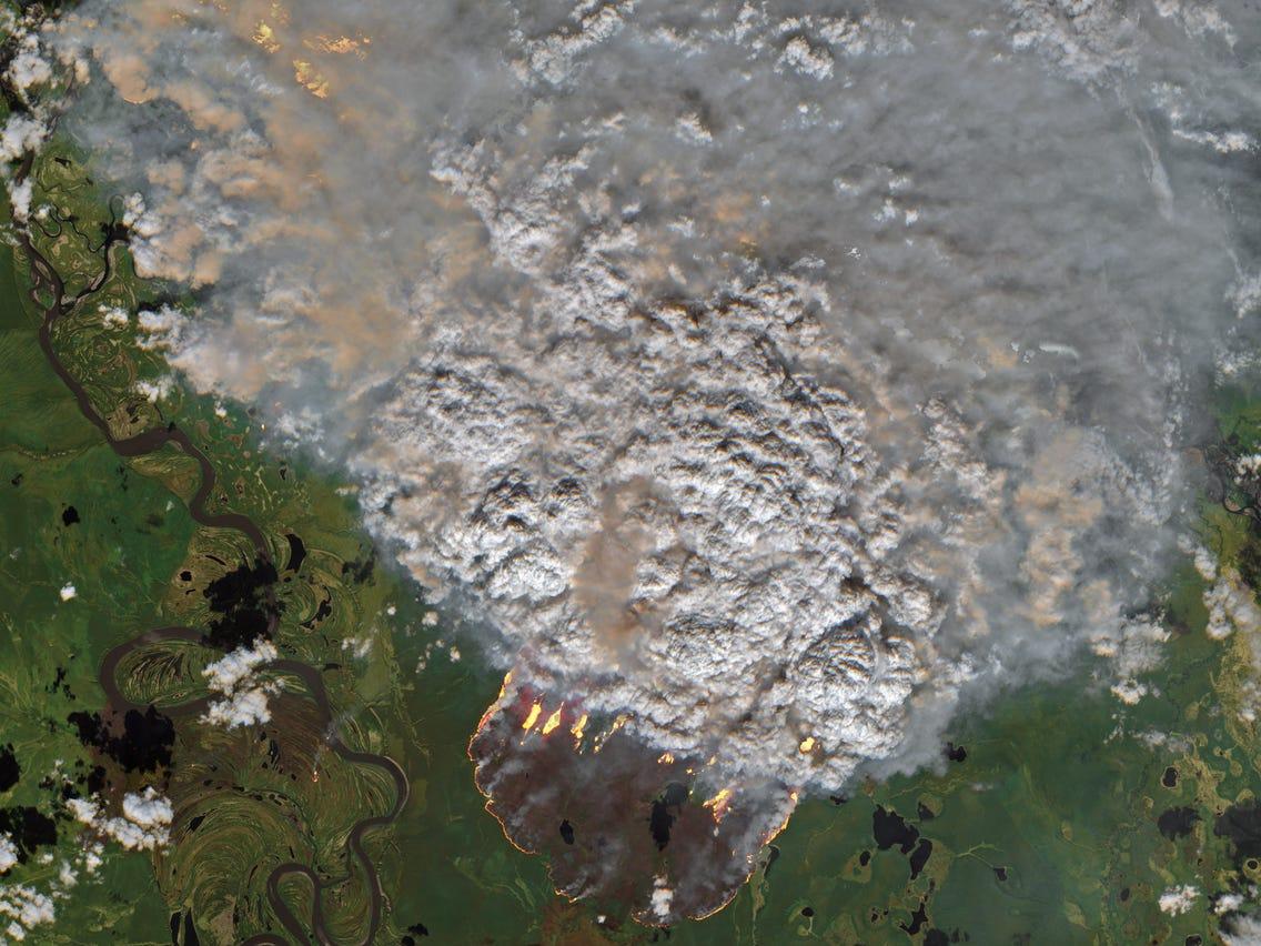 thảm họa cháy rừng