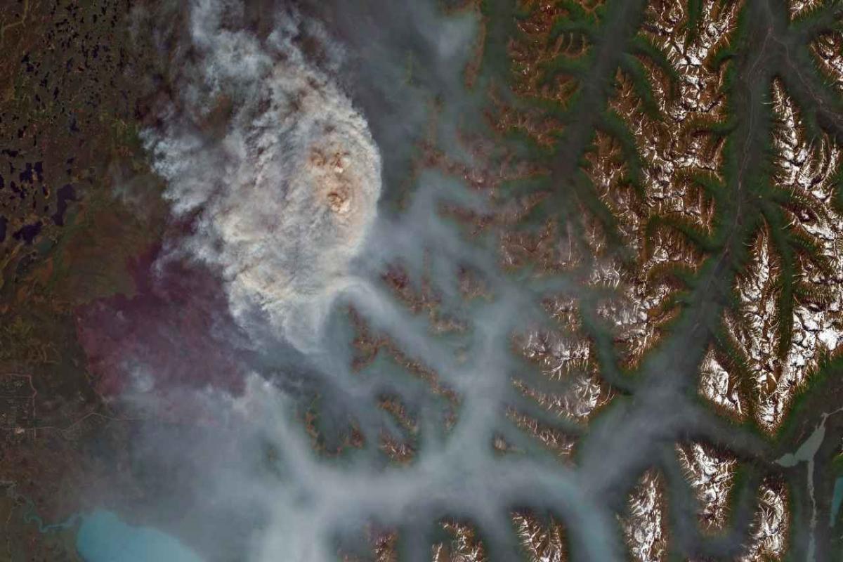 biến đổi khí hậu gây ra cháy rừng