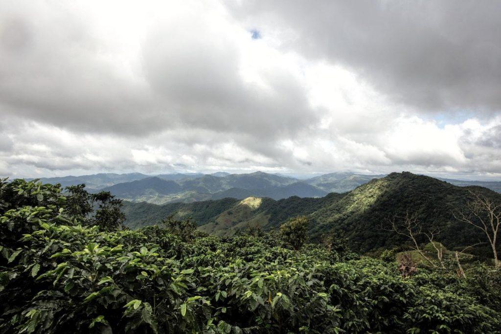 CHANEL-Cảnh núi và mây.