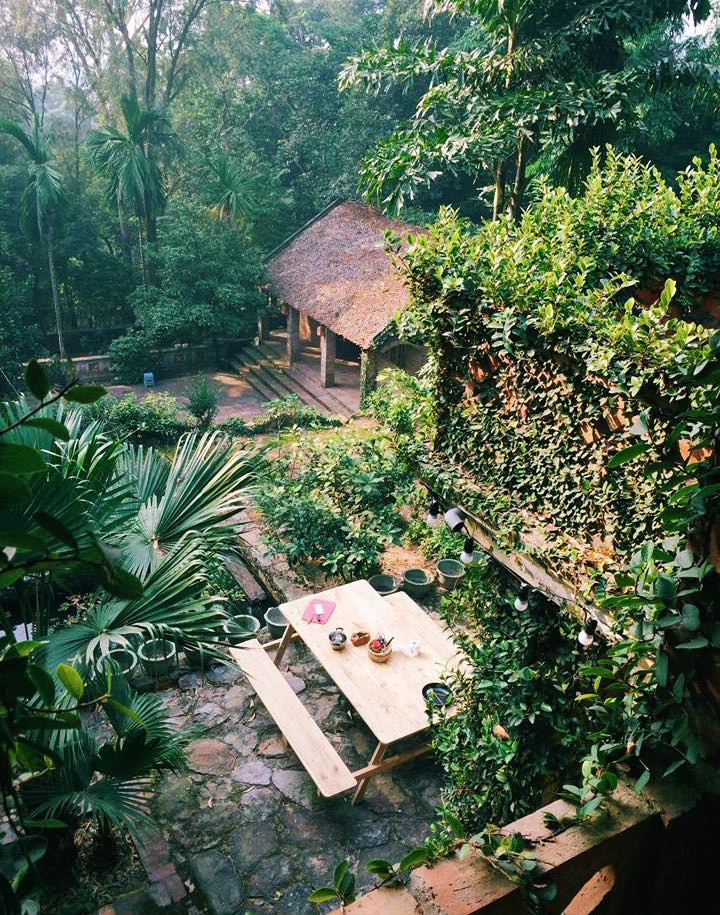 Jungle House (Bắc Ninh) homestay