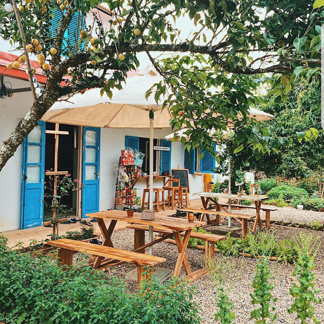 Mama's House Hostel (Mộc Châu) homestay