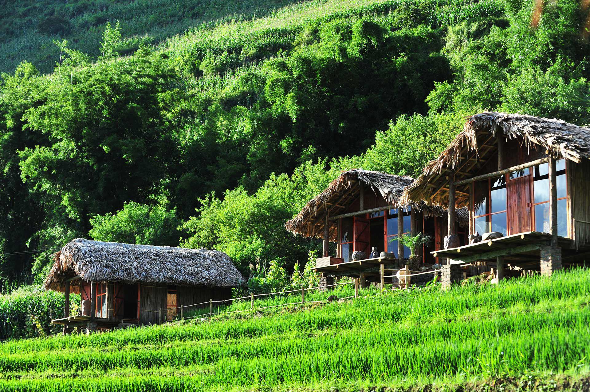 Phơri's House (Sapa) homestay