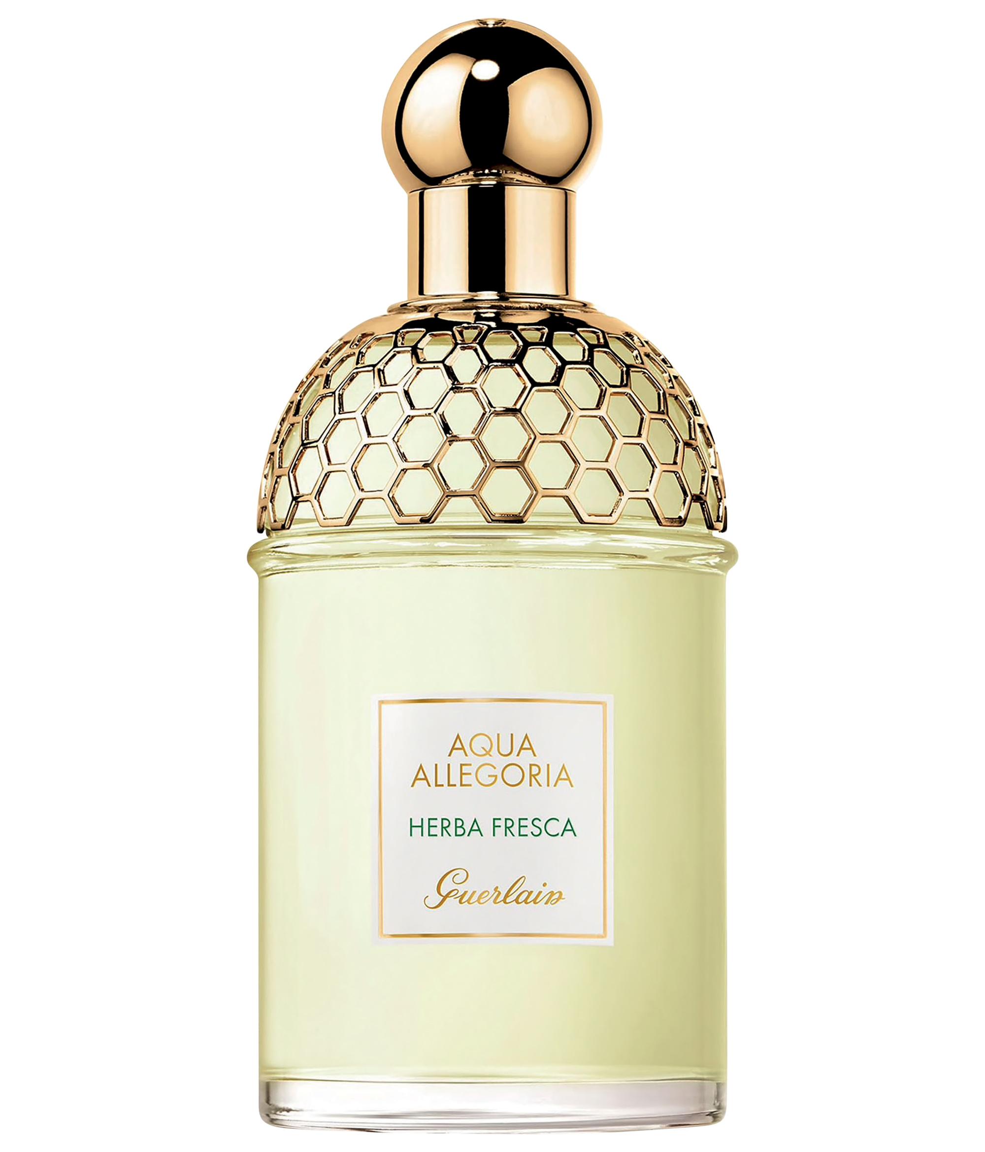 bạc hà nước hoa Herba Fresca Guerlain