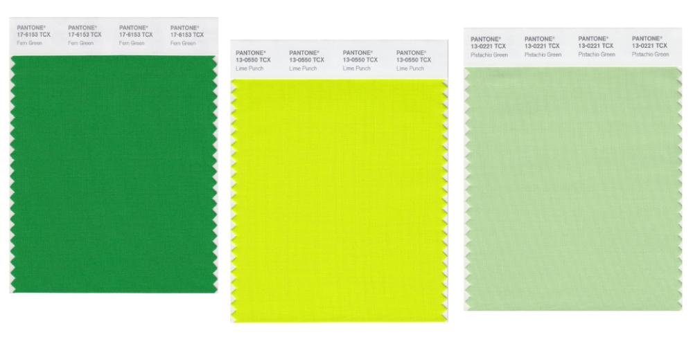 cách phân biệt màu pantone nhóm màu xanh lá