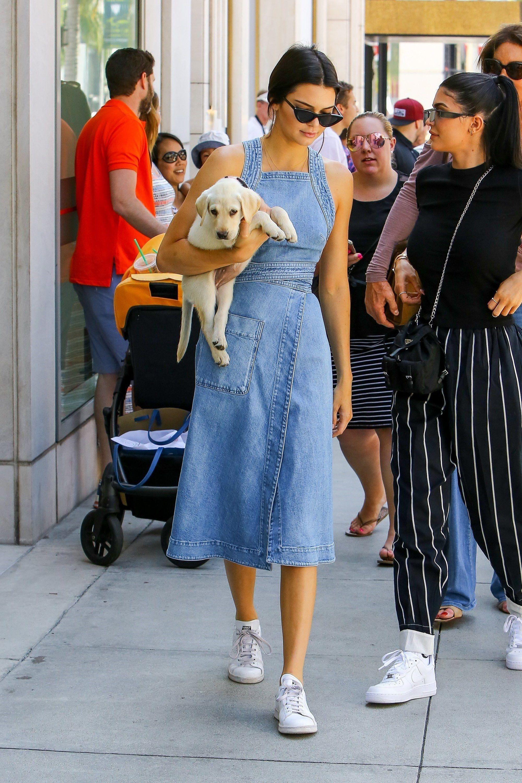 Kendall Jenner ôm chó, mặc đầm denim