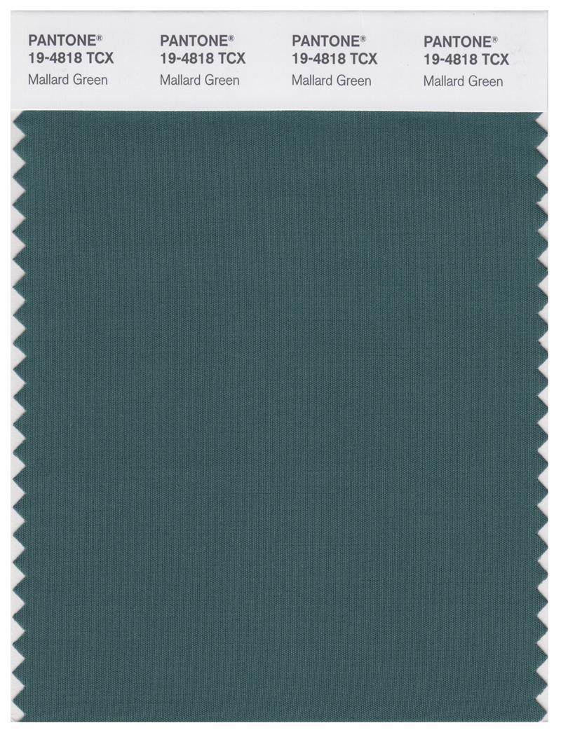 Thông tin về màu xanh cổ vịt trên Pantone