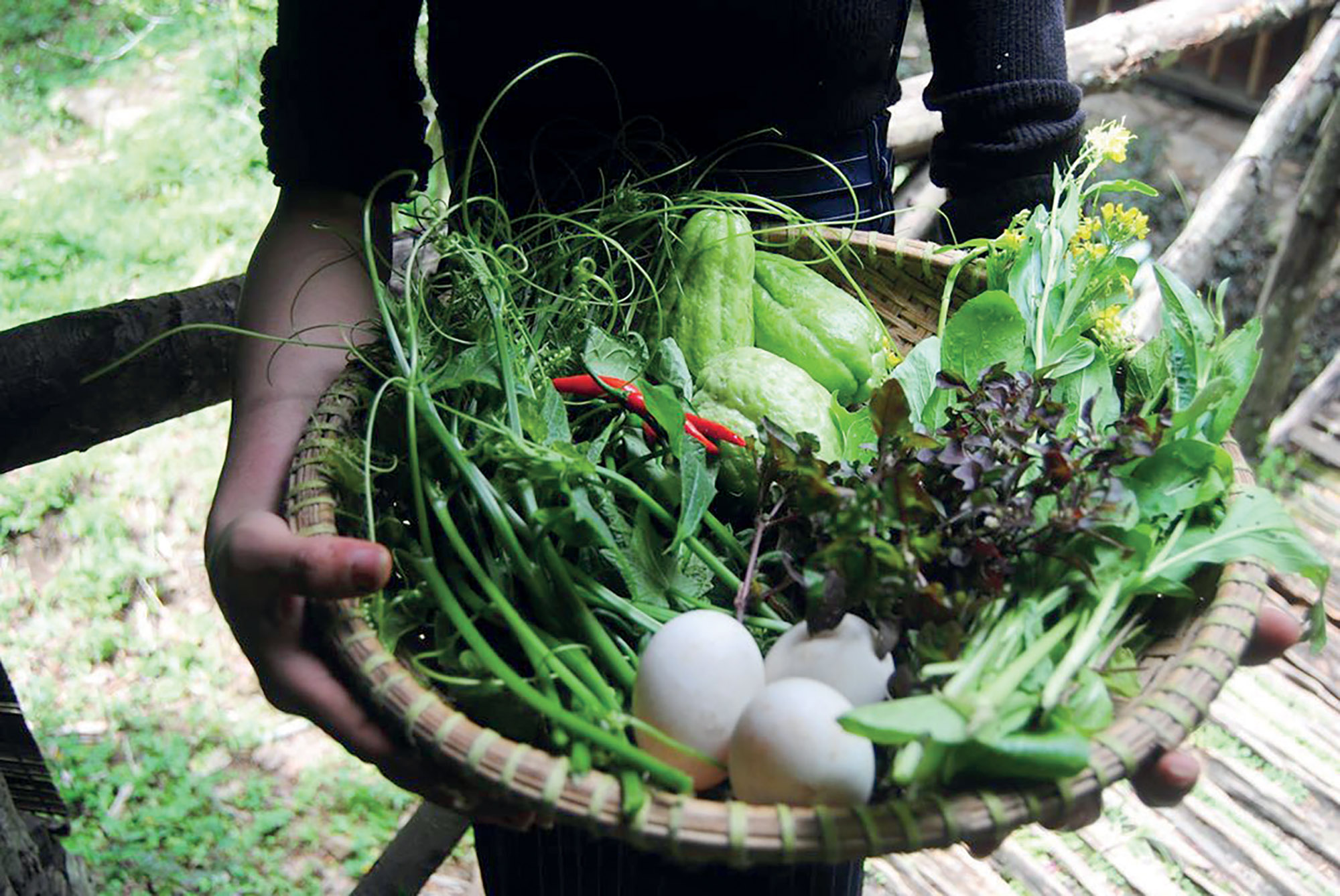 lương thực bản địa