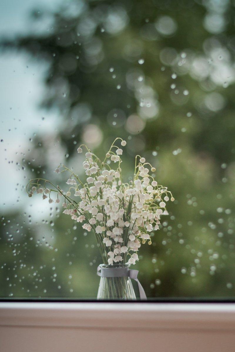 chậu hoa linh lan cho người biết yêu bản thân