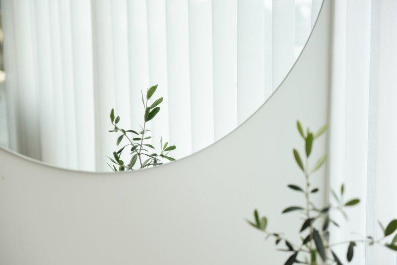 trắc nghiệm tấm gương và cây xanh