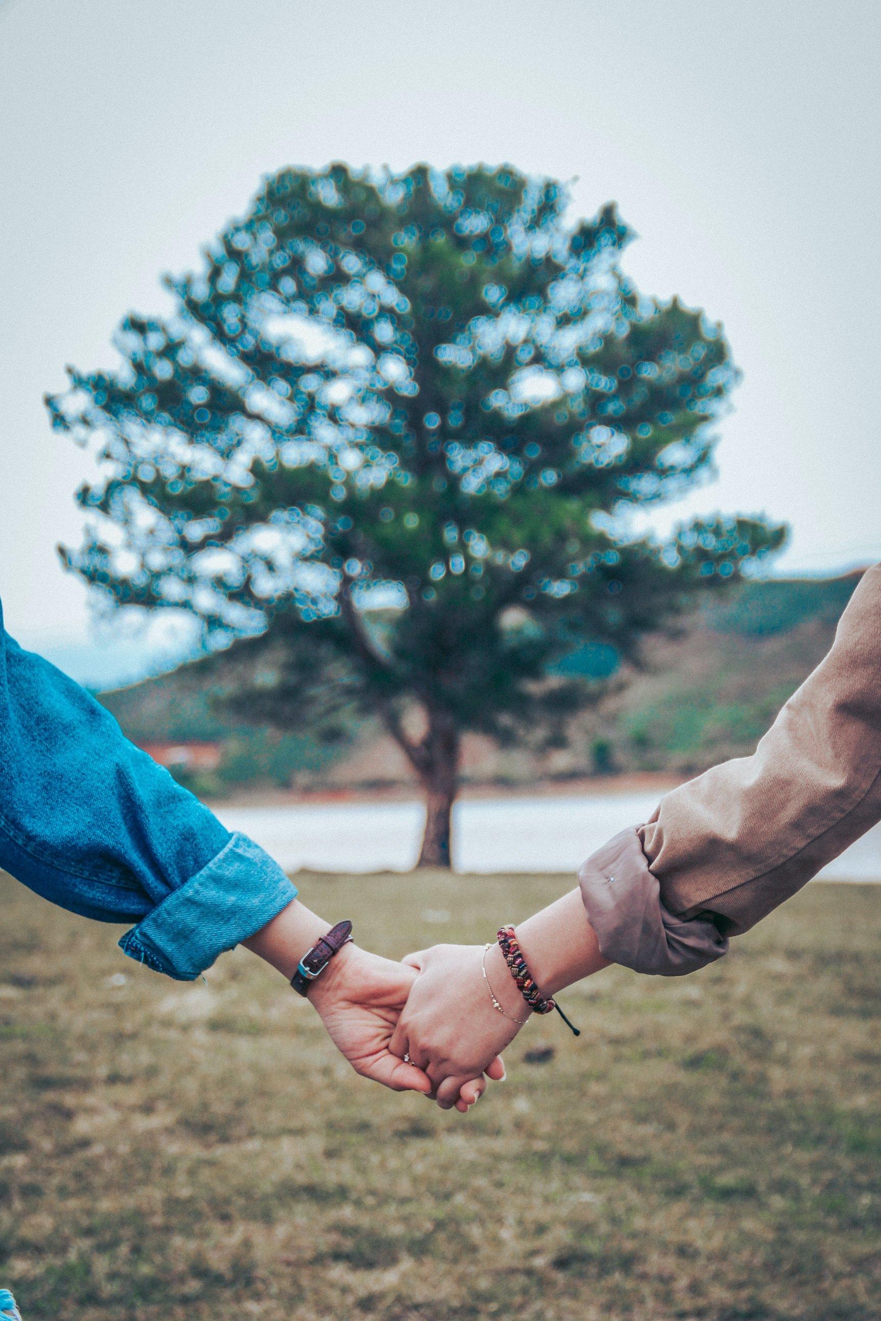 hai người nắm tay cái cây