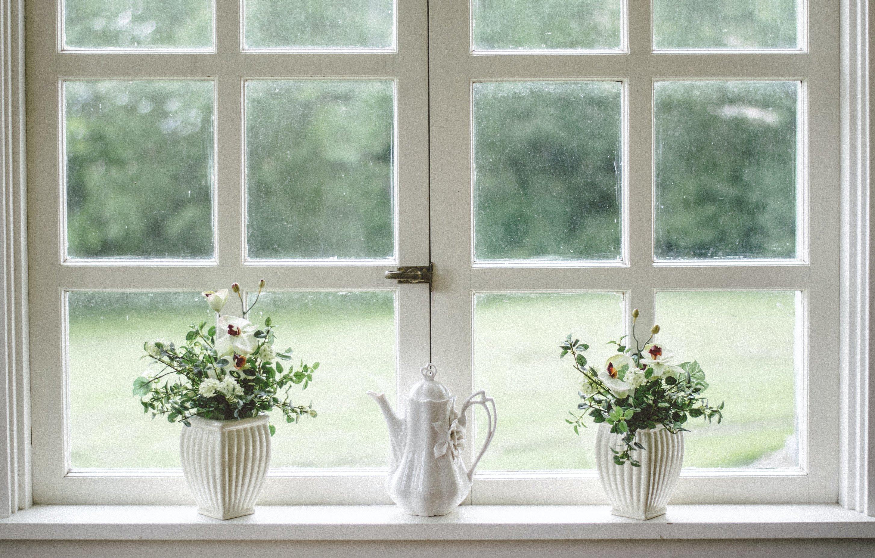 cung hoàng đạo hai cây bên cạnh cửa sổ