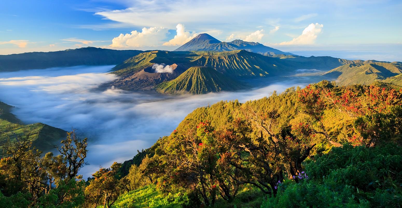 châu Á Java Indonesia