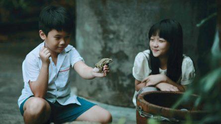 Nhìn lại hành trình trưởng thành của phim Việt