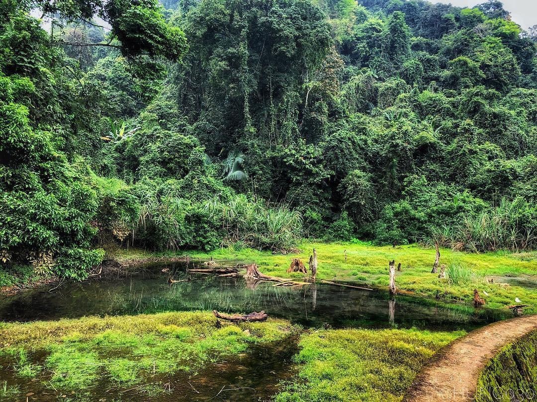 trekking rừng quốc gia cúc phương