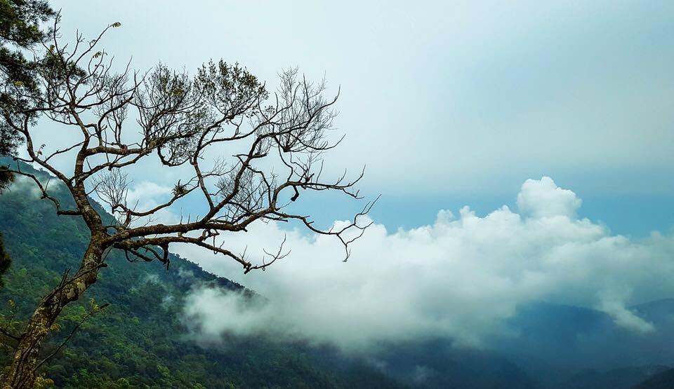 trekking Tam Đảo