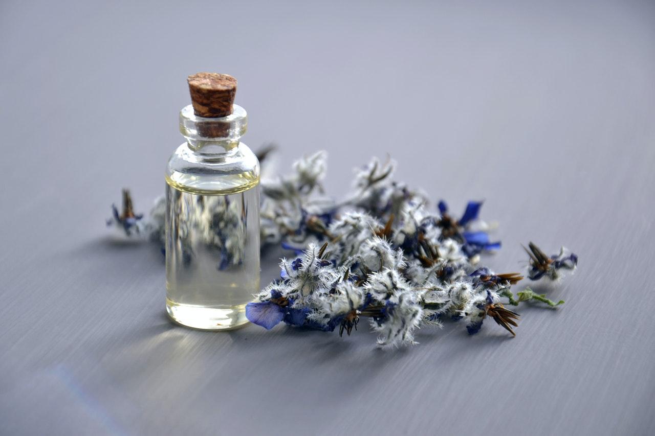 nước hoa - lavender 1
