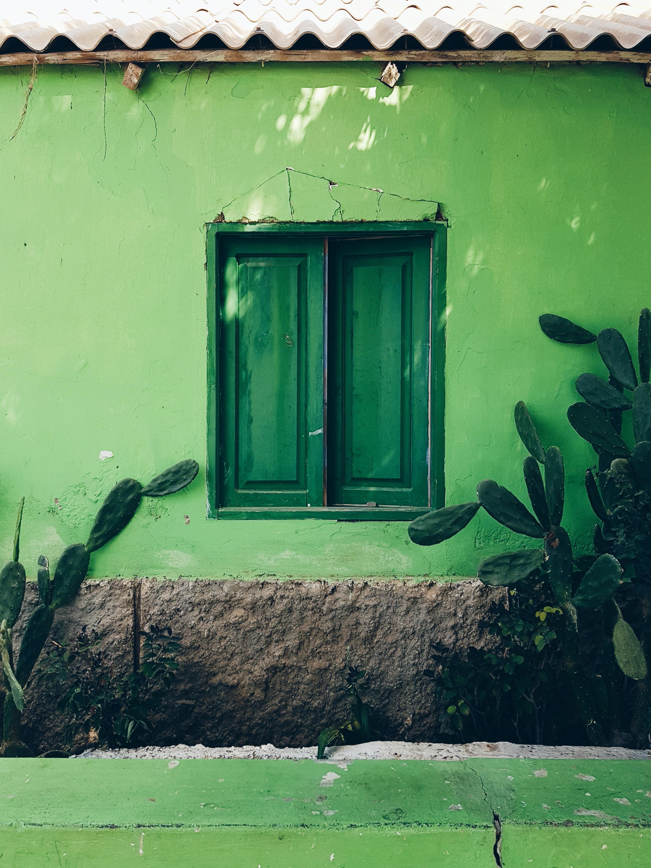 luân xa xanh lá