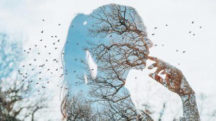 Mushin: Nghệ thuật của trạng thái vô tâm trí