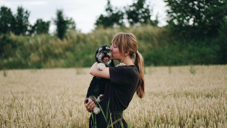 người hướng nội và thú cưng trên đồng cỏ