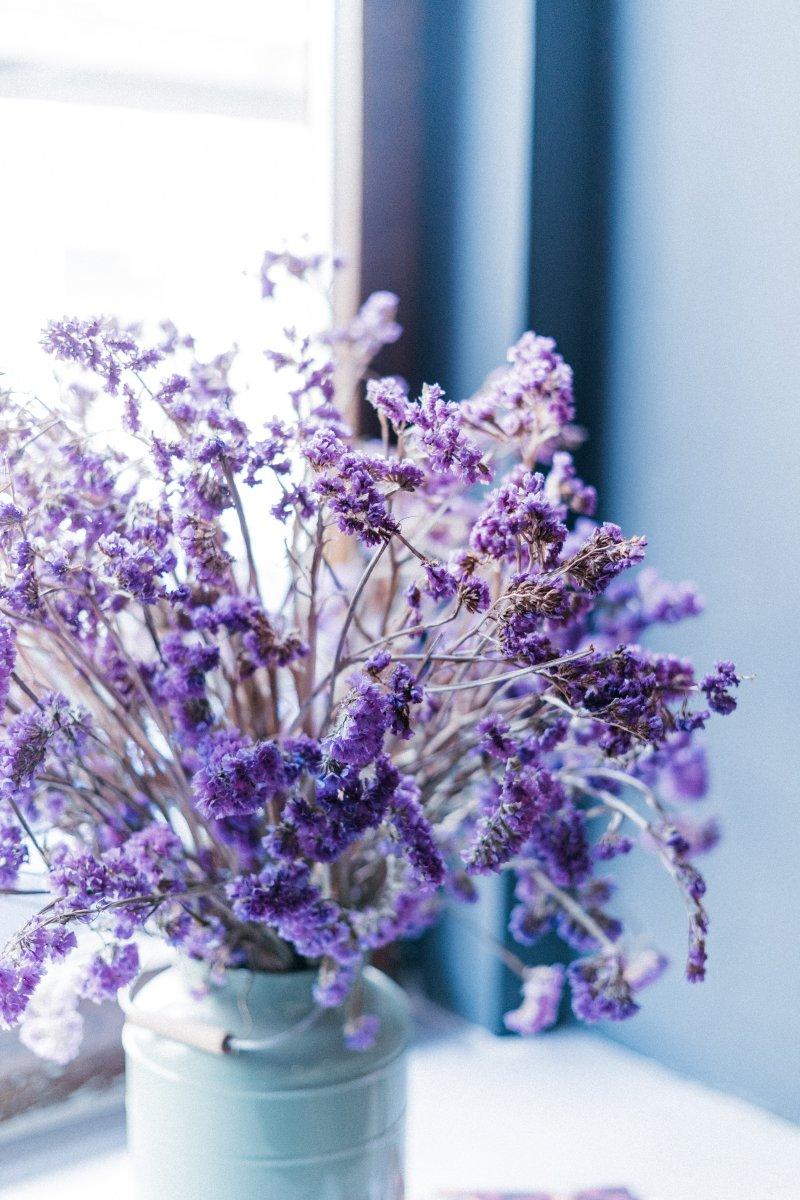 cung hoàng đạo lavender
