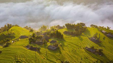 Du lịch Tây Bắc: Đắm say vẻ đẹp thiên nhiên mùa lúa chín