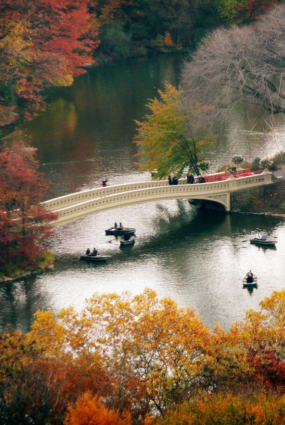 mùa thu ở central park